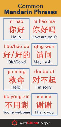 Learn to read and speak Chinese. Learning common Mandarin phrases are useful when traveling th. Basic Chinese, How To Speak Chinese, Mandarin Characters, Learn Chinese Characters, Chinese Pinyin, China Language, Language Study, Mandarin Lessons, Chinese Phrases