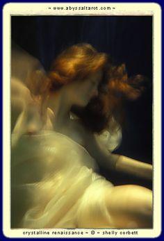 Shelly Corbett's underwater photography!