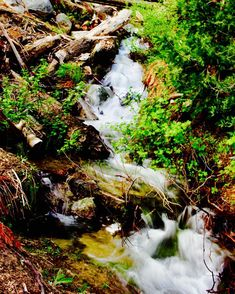 #sequoianationalpark #runningwater #streams #playingwithwater #dance #california #roadtrip #mountainlife #brucebeanphotography #love #instagood