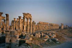 Afamia. Syria