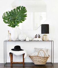 Plantas y cestas