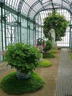 Visite des Serres royales de Laeken (Belgique) http://www.pariscotejardin.fr/2014/04/visite-des-serres-royales-de-laeken-belgique/