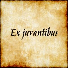 Ex juvantibus - From that which helps. #latin #phrase #quote #quotes - Follow us at facebook.com/LatinQuotesPhrases