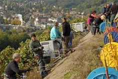 Thann : des vendanges vertigineuses au Rangen - L'Alsace