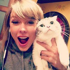 かわいいと話題な、テイラー・スウィフトの愛猫メレディスちゃん。 テイラーとは対照的な、この表情が何とも言えない! ©Instagram/TaylorSwift