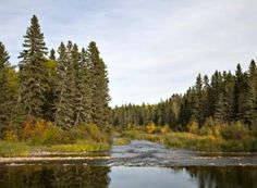 50 Gorgeous Parks Across Canada | Reader's Digest