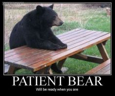 Patient Bear: Will be ready when you are.