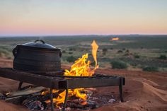 Making Biltong, Dry Wors and Other South African Recipes South African Bunny Chow, South African Braai, South African Dishes, South African Recipes, Best Camping Meals, Camping Recipes, Cooking Torch, Cooking Games, Biltong