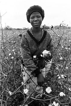 Cedric Nunn. South African Farm Workers