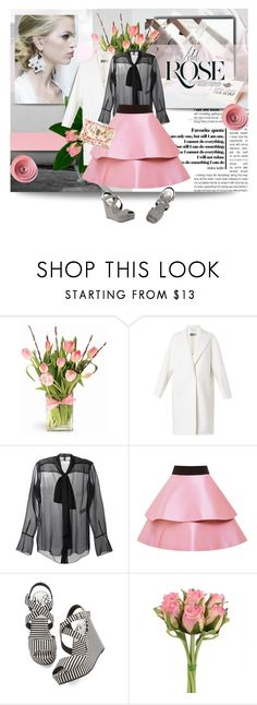 """A Rose by Any Other Name..."" by pattykake ❤ liked on Polyvore featuring Made of Me, Sportmax, Chloé, FAUSTO PUGLISI and Nica"