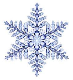 宝石みたい。研究者が数年にわたり記録した雪の結晶たち 6