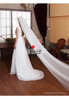 Sheer Wedding Veil 2 Tiers Tulle Bridal Veil Cathedral Length with Comb Style BV026 - Wedding Veil