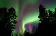 Aurora Borealis - Luosto, Northern Finland