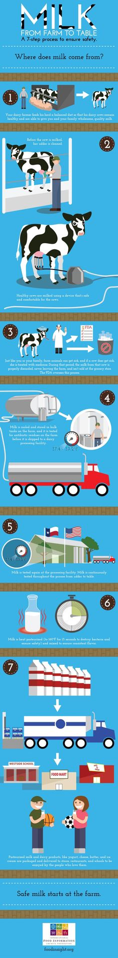How does your milk get to you (and how do I know it's safe?) Milk production infographic 2014 by FoodInsight kindergarten, Ag Day, From Farm To Table, Dairy Cattle, Animal Science, Ag Science, No Dairy Recipes, Diabetic Recipes, Way Of Life, Farm Life