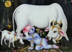 krishna drinks cow's milk