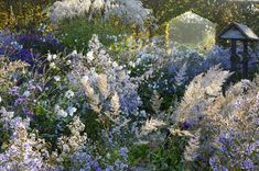 Phillipe Perdereau | Focus on garden - Fine Photography