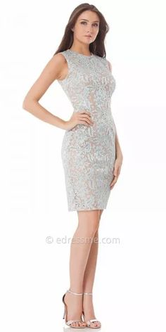 Sleeveless Lace Two Tone Cocktail Dress By Carmen Marc Valvo Infusion
