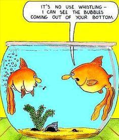 Farting fish.