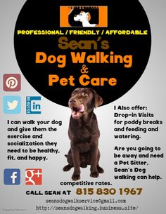 Sean's Dog Walking & Pet Care Flyer! Check out my services, rates, and contact… - dog kennel boarding Dog Walking Rates, Dog Walking Services, Dog Walker Flyer, Dog Walking Business, Dog Rates, Pet Sitting, Dog Daycare, Dog Boarding, Pet Care