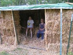 strawbale chicken coop-large scale. I have zero carpentery skills so this seems doable and less scary.