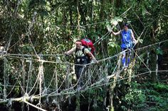 rope bridge, over sungai terikan, lubang cina, gunung mulu national park, sarawak, malaysia, pat kambesis, roland gau 1 by Alan Cressler, via Flickr