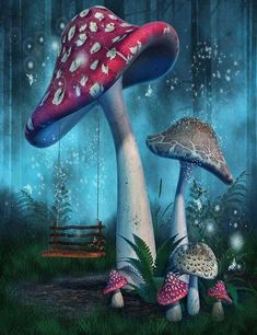 Fantasy Mushrooms With Fairy Swing In Forest Photography Backdrop Fairy Tale Forest, Magic Forest, Forest Art, Fairy Tales, Blue Forest, Mushroom Drawing, Mushroom Art, Mushroom House, Forest Drawing
