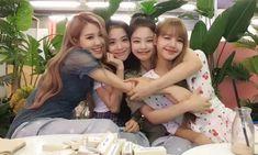 How Lisa is treated in Korea I Love Girls, These Girls, Yg Entertainment, Nct 127, South Korean Girls, Korean Girl Groups, Shinee, Got7, Blackpink Members