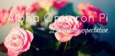 Alpha Omicron Pi ♥ Phi Delta