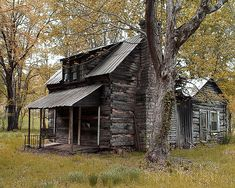 The old home place features a rustic log cabin built in the early 1800's in southern middle Tennessee. The scene has just a hint of autumn foliage.