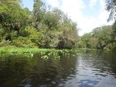 Wekiwa Springs, Florida.