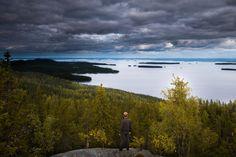 Suomen kansallismaisemaa Kolilla. Eikö olekin kaunista? #sokoshotelsroadtrip #Koli #Finland Kuva @kpunkka for Sokos Hotels