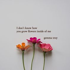"9,241 Likes, 131 Comments - Gemma Troy Poetry (@gemmatroypoetry) on Instagram: ""Please Read* . I don't know how you grow flowers inside of me I look at you and my eyes bloom…"""