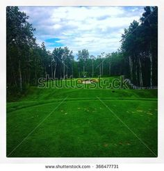 Bright and lush green grass on golf course with bunker in background and thick, tall trees along fairway.  Blue sky and clouds. Instagram effects