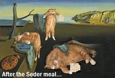 After the Seder meal, Meme by Elisheva.