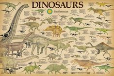 Poster On, Poster Prints, Art Prints, Wall Posters, Chart School, San Diego, Dinosaur Posters, Dinosaur Bedroom, Cool Wall Decor