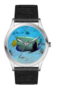 Tropical fish watch series