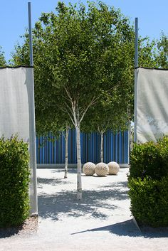 Garden Play by Topher Delaney @ Cornerstone Sonoma