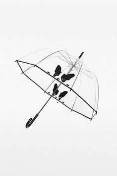 Clear Pug Dome Umbrella