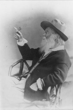 """Portrait of Walt Whitman with butterfly, 1877 - by Catherine Turcich-Kealey    """"Not for a moment, beautiful aged Walt Whitman, have I failed to see your beard full of butterflies."""" - Federico Garcia Lorca"""