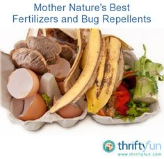 Mother Nature's Best Fertilizers and Bug Repellents   ThriftyFun