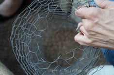 Make a Chicken Wire Cloche for Your Garden or to Use in Vignettes.