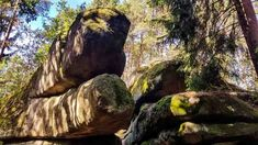 Outdoor, Road Trip Destinations, Hiking, Woodland Forest, Destinations, Autumn, Viajes, Nice Asses, Outdoors