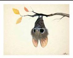 Those eyes o.o art cute animal illustration, art, october art. Art And Illustration, Cute Animal Illustration, Animal Illustrations, Illustrations Posters, October Art, Cute Bat, Cute Drawings, Cute Animal Drawings, Amazing Art