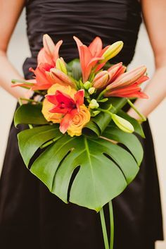 Monstera Deliciosa wedding - Google Search