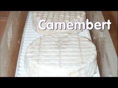 Making Camembert at Home
