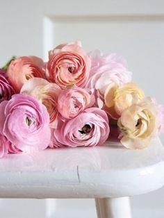 Ranunculus Wedding Flowers