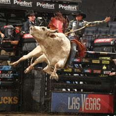 CG'S Loves Rodeo's Wow, talk about catching some air.  Yikes