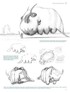 Appa is so fluffy Avatar Aang, Avatar The Last Airbender Art, Team Avatar, Character Art, Character Design, Animation, Zuko, Legend Of Korra, Anime