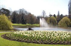 Park van Aalst! Gezellige plaats voor picknick's, om te wandelen en om gewoon rond te hangen.
