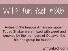 MORE OF WTF FACTS are coming HERE disney, movie and fun facts
